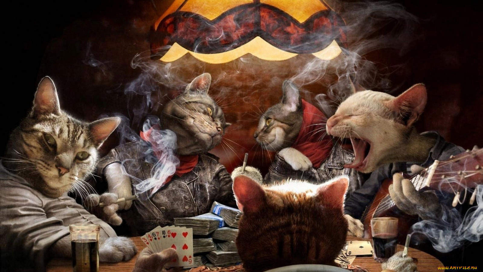 Юмор приколы карты коты игра деньги
